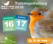 De Nationale Tuinvogeltelling op 16 of 17 januari 2016
